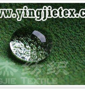 Waterproof and oil proof Teflon Fabric