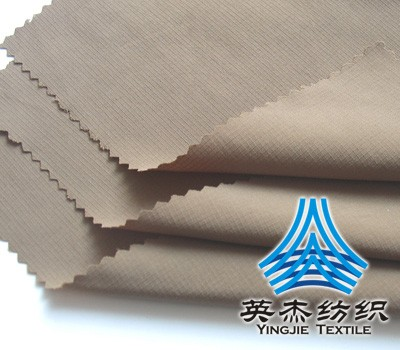 Full dull NyLon 0.1Ripstop Fabric